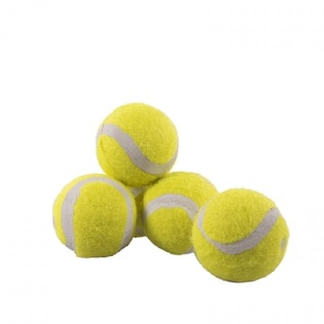 Rosewood jolly doggy tennisbal mini